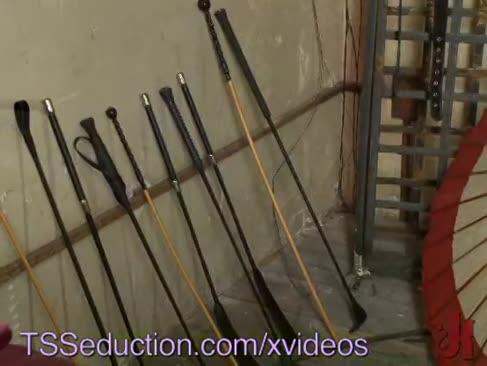 Tss 21455-tsseduction xvideos